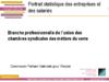 Portrait statistique des entreprises et des salariés de la branche professionnelle de l'Union des chambres syndicales des métiers du verre - application/pdf