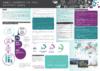 Banque, assurances, retraite, prévoyance (BARP) - application/pdf